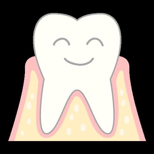 歯ぐきを守る