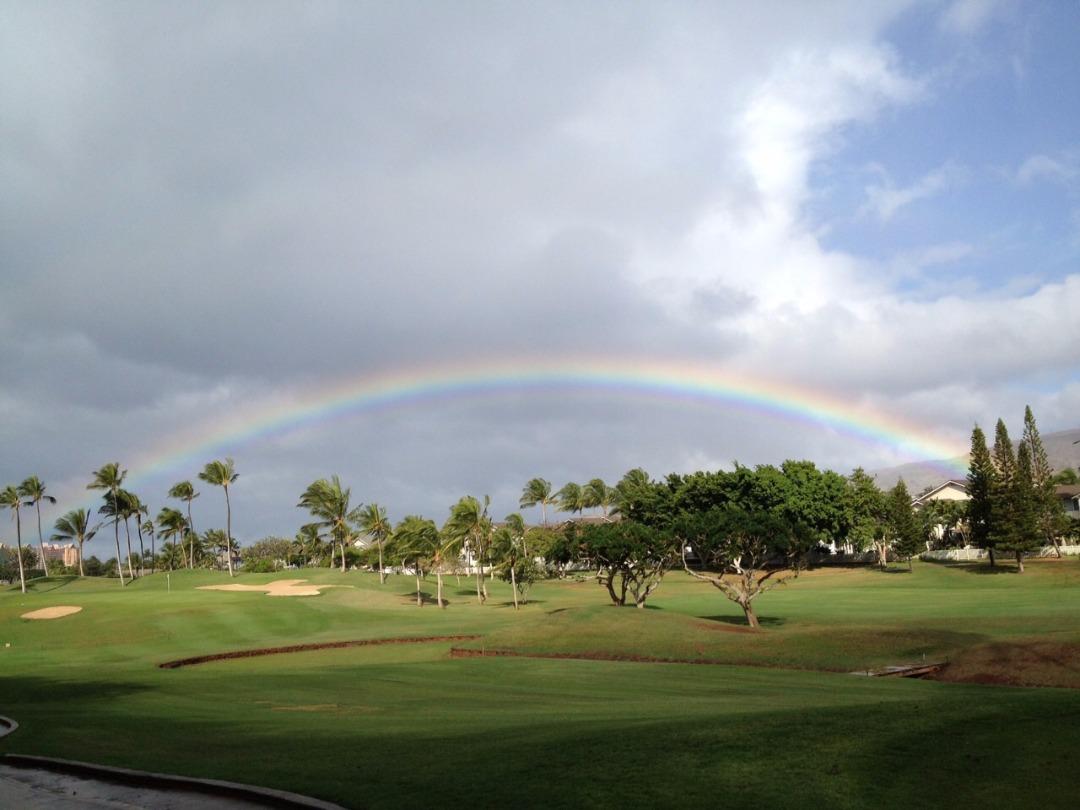 ハワイ「南国」イメージ