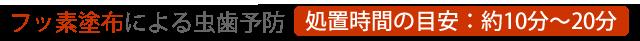 フッ素塗布による虫歯予防[処置時間の目安:約10分~20分]