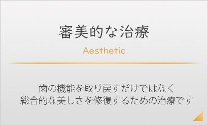 審美的歯科治療 - 歯の機能を取り戻すだけではなく総合的な美しさを修復するための治療です