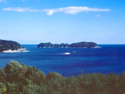 タブの大島(山田八景)