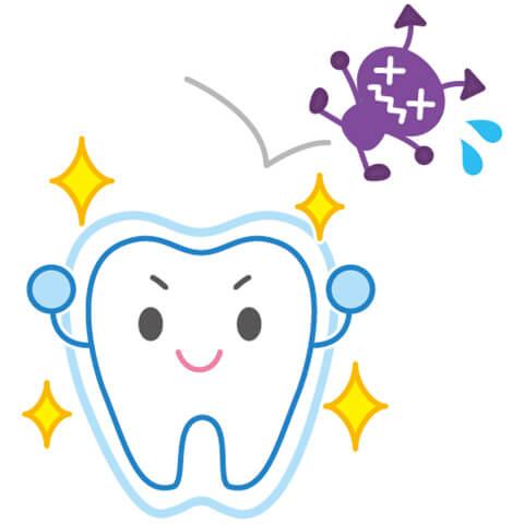 むし歯に強い歯をつくるフッ素