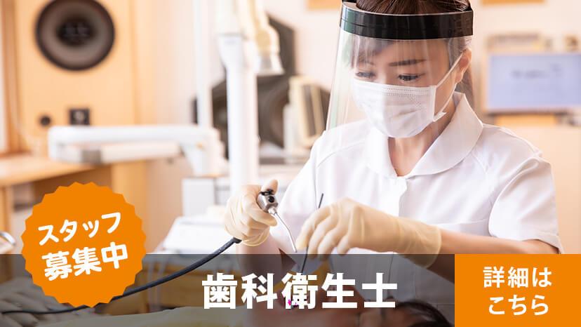スタッフ募集 歯科技工士