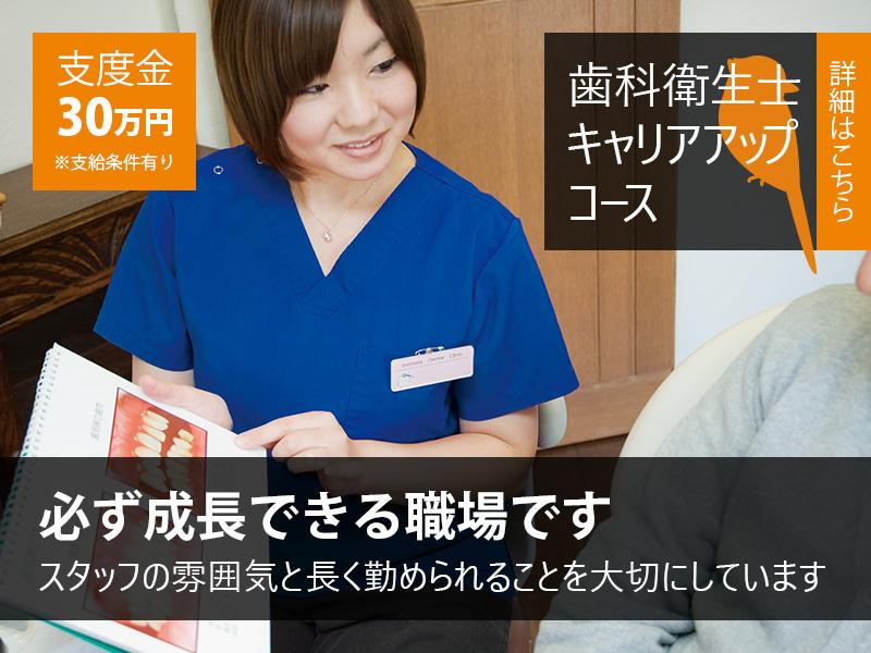 歯科衛生士キャリアアップコース