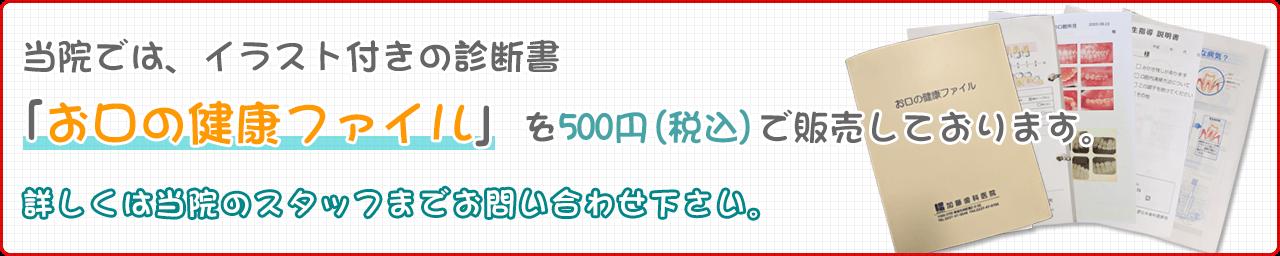 当院では、イラスト付きの診断書「お口の健康ファイル」を500円(税込)で販売しております。詳しくは当院のスタッフまでお問い合わせ下さい。