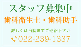 歯科衛生士・歯科助手募集 詳しくは当院までご連絡下さい。お問合わせ先:022-039-1337