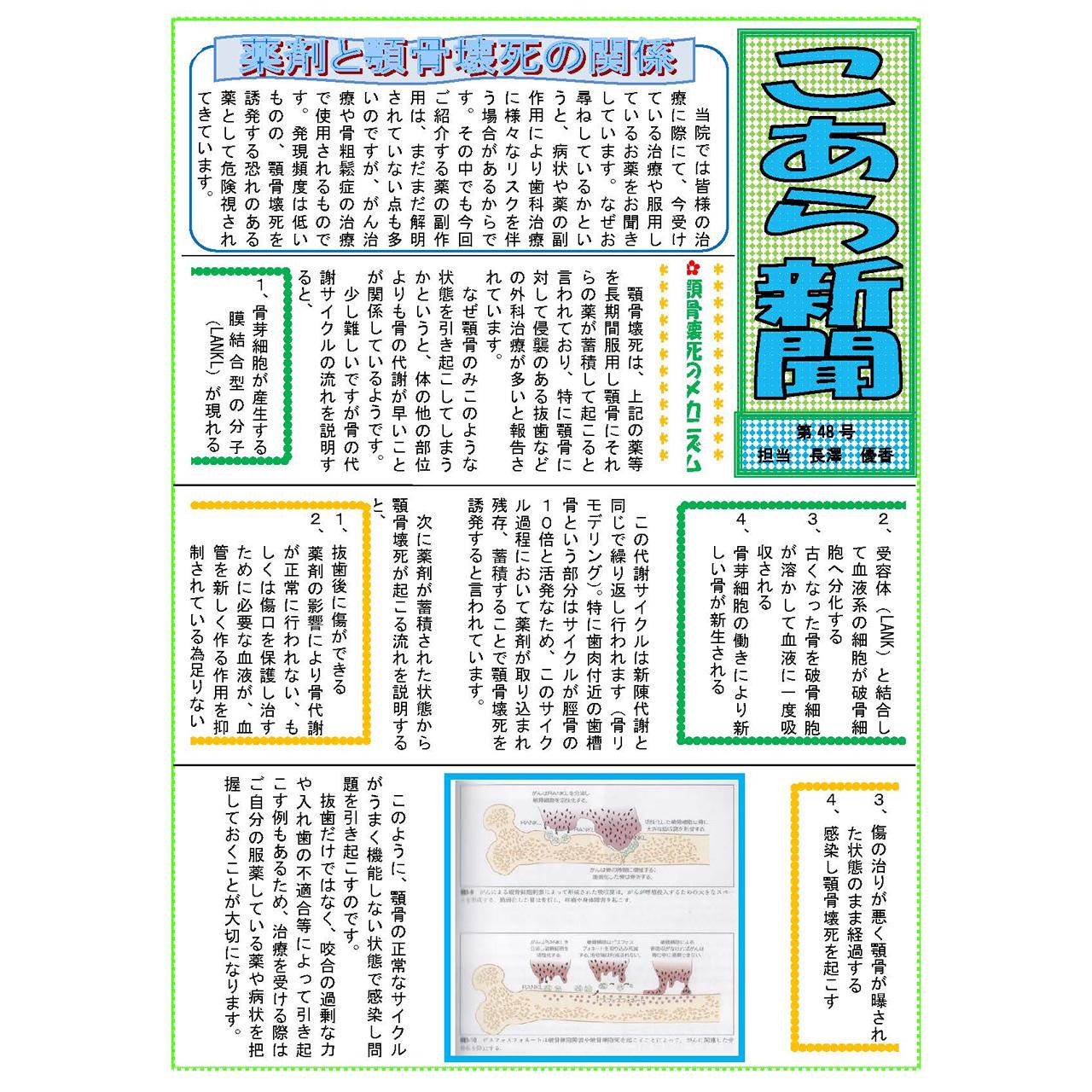 こあら新聞 第48号 担当 長澤
