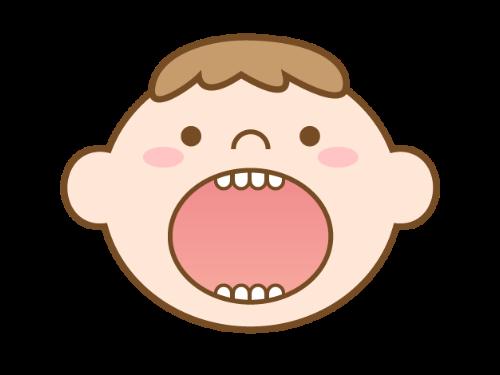 原因2: 乳歯のエナメル質や象牙質の薄さ
