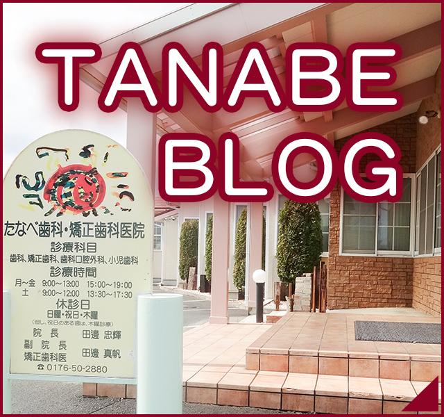 TANABE BLOG