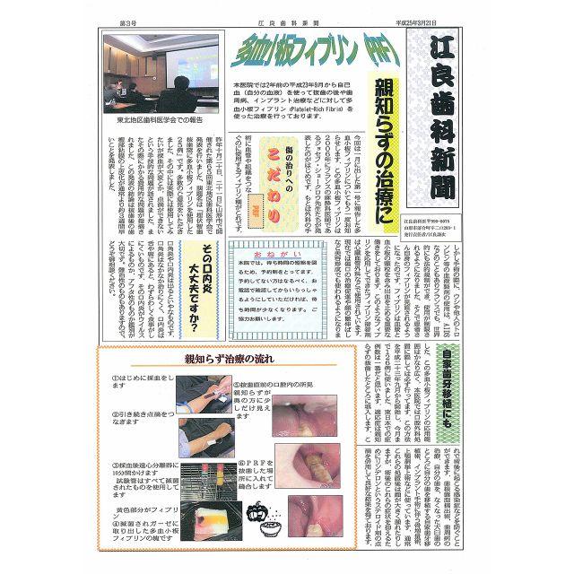 平成25年3月21日発行