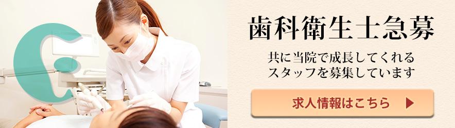 歯科衛生士急募 共に当院で成長してくれるスタッフを募集しています 求人情報はこちら