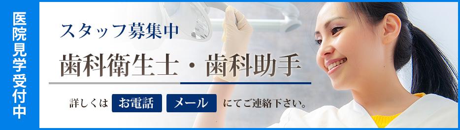 歯科衛生士・歯科助手 スタッフ募集中