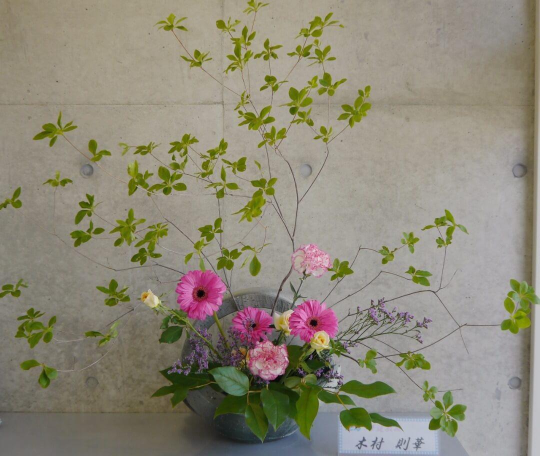 2017-5-9『春の花畑』