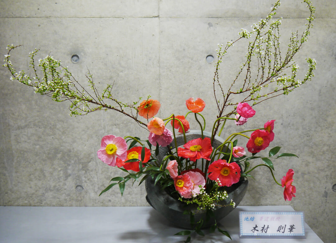 2016-3-8 『早春の香り』