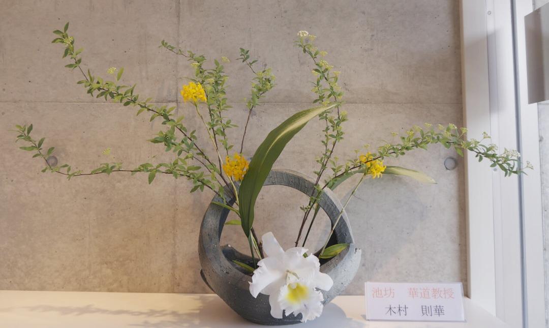 2020-2-14『花に心ときめいて』