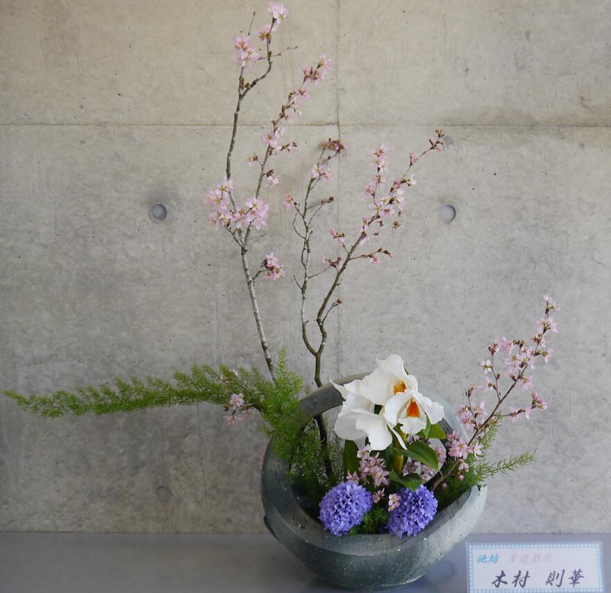 2016-4-6 『春の妖精』