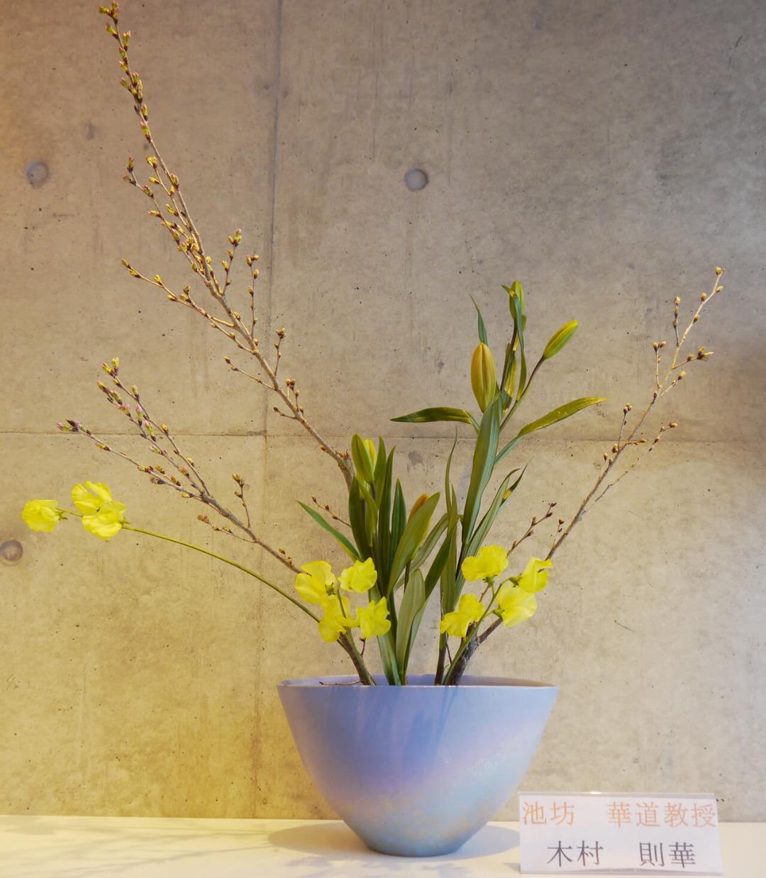 2019-2-5『春の香り』