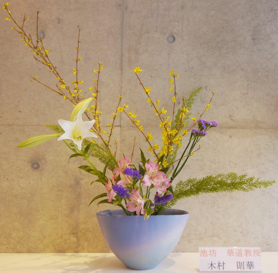 2018-3-23『春の花』