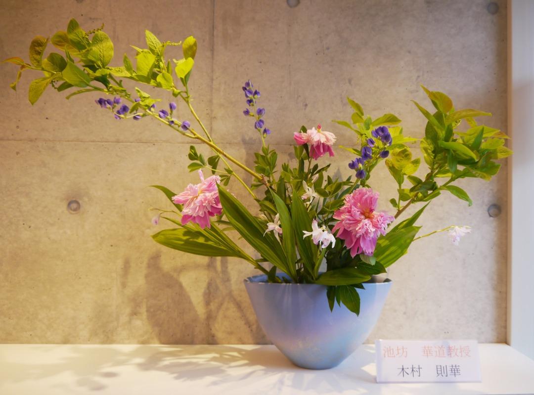 2019-6-4『華やかな花達』