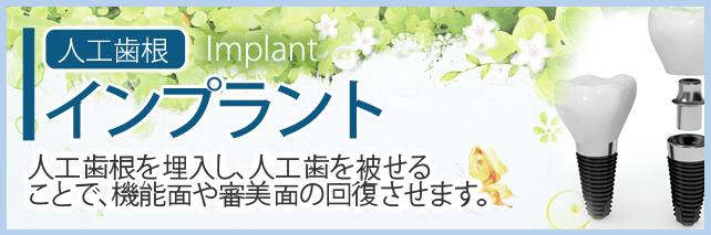 人工歯根 インプラント