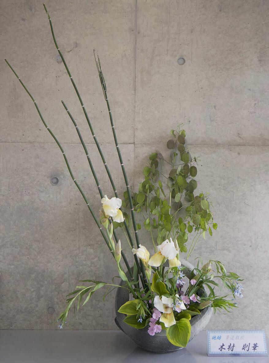 2016-5-24『立ちのびる草花』