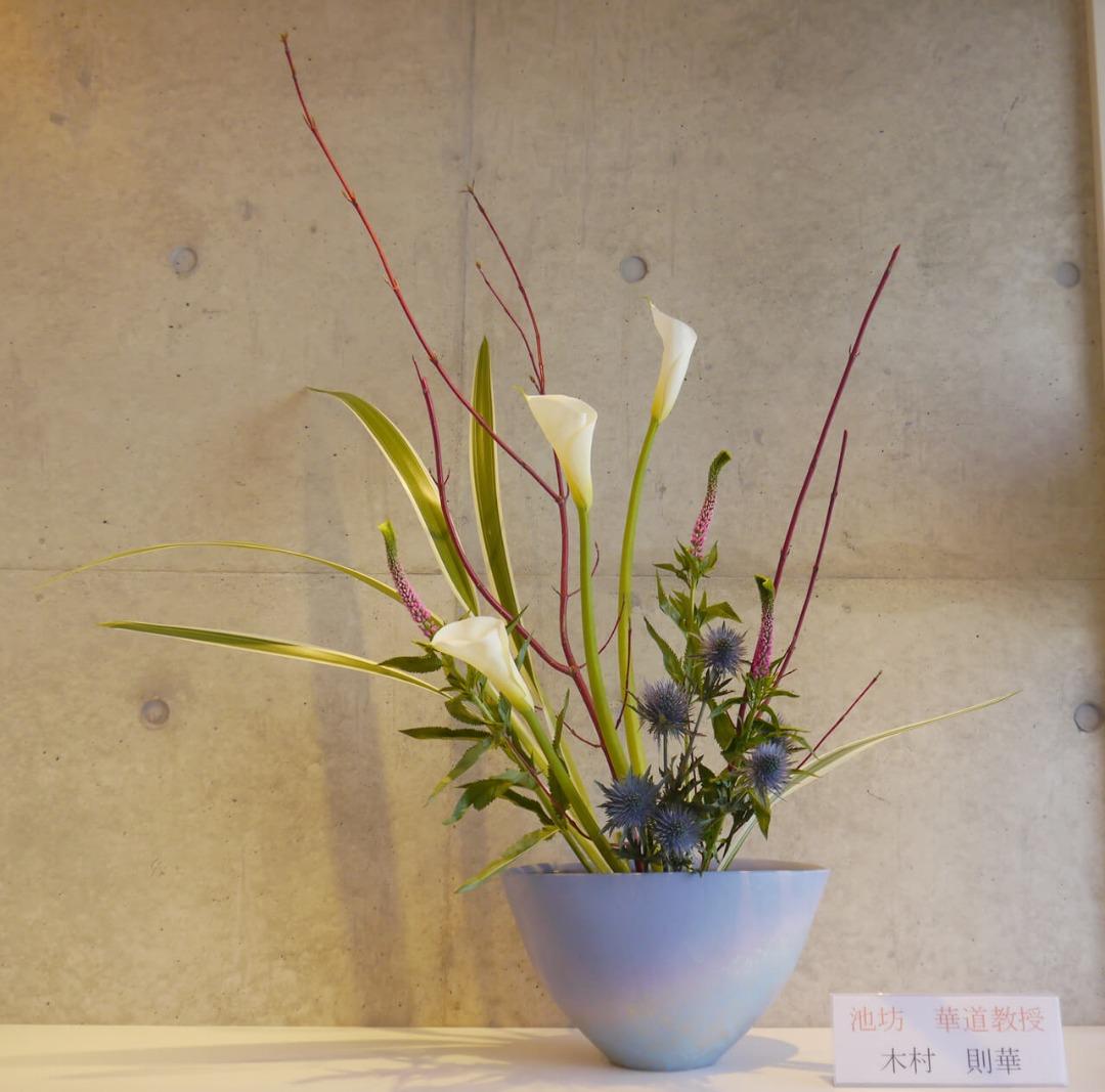 2019-4-9『春の香り』