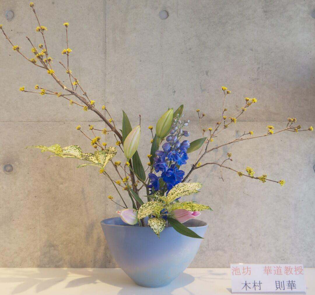 2018-3-6『春を詠うー花のささやき』