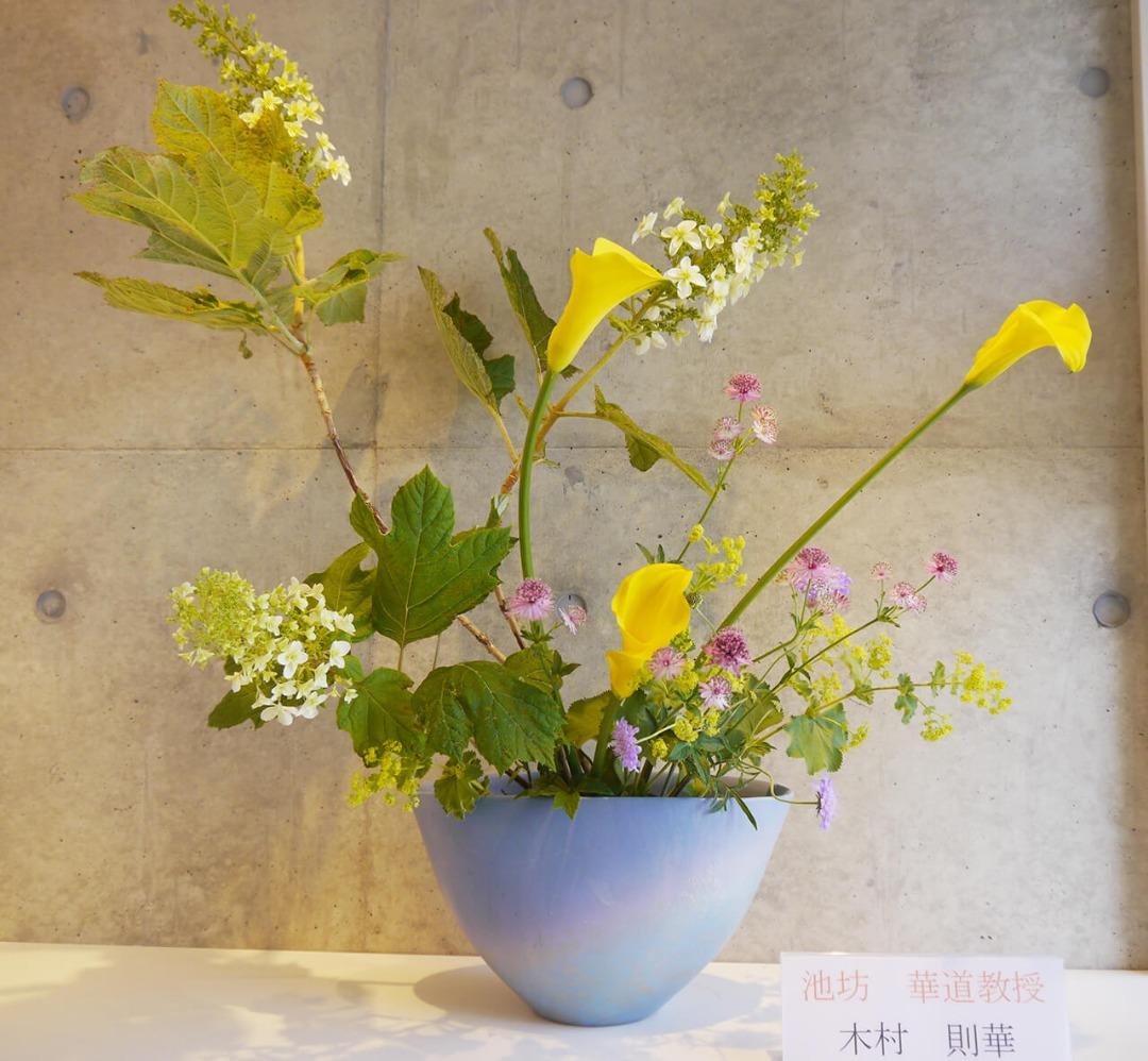 2019-6-12『光風ほとばしる花の命』